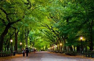 central-park-fall